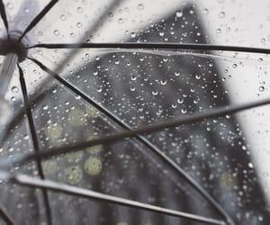 b&w, rain, and umbrella image