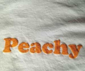 funny, orange, and peachy image