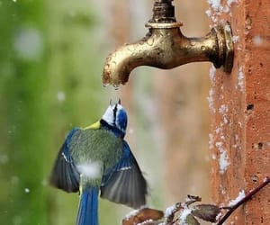 agua, nature, and photography image