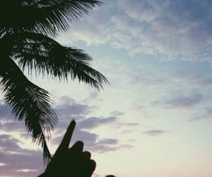 beach, hand, and summer image