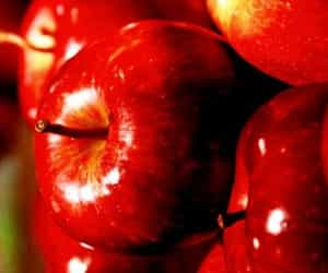 apples, food, and red image