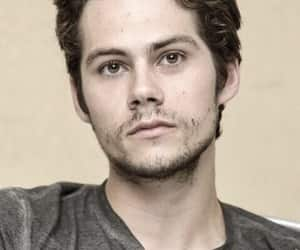 celebrity, boy, and dylan image