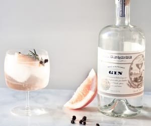 gin and grapefruit image