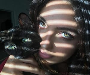 aesthetic and cat image