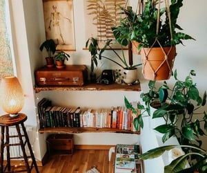 room, plants, and grunge image