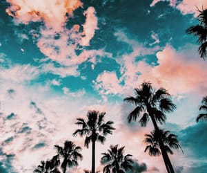 aesthetic, beach, and sky image