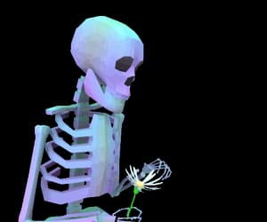 flowers, gif, and skeleton image