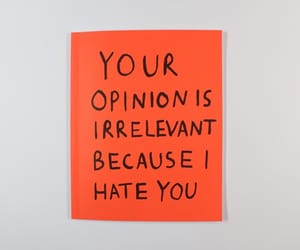 hate, quotes, and opinion image