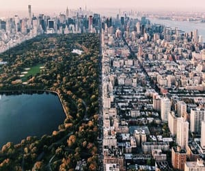 Central Park, city, and pretty image