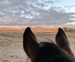 caballos, nubes, and paisaje image