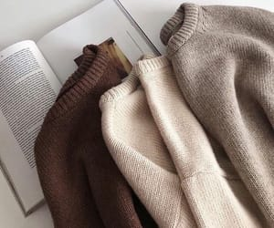 sweater, book, and brown image