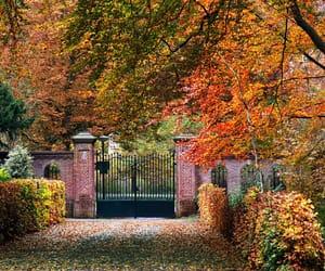 autumn, fall, and gate image