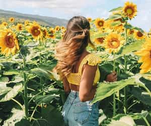 sunflower, fashion, and flowers image