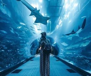 blue, girl, and aquarium image