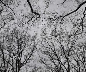 black, cloud, and grey image