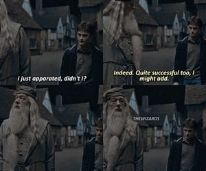 harry potter, lol, and albus silente image