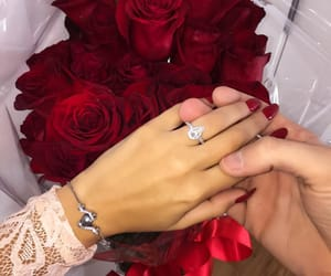 rose, couple, and ring image