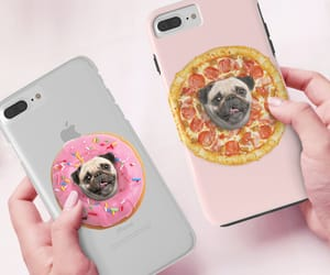 cute dog, funny dog, and pug lover image