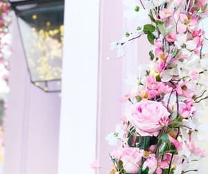 florals, flowers, and hello spring image