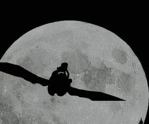 hippo, moon, and furia image
