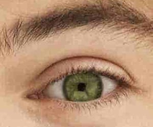 green, 1d, and Harry Styles image
