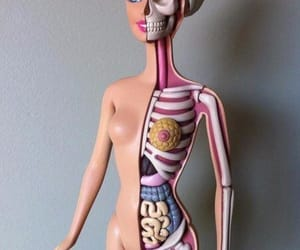 barbie, body, and doll image