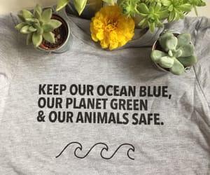 animals, flower, and inspiring image