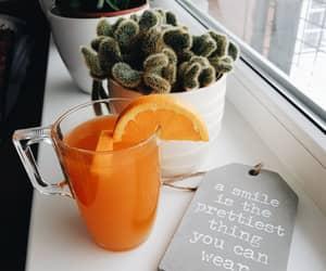 cactus, orange, and tea image