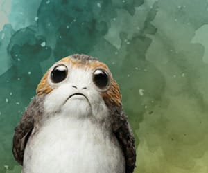 background, funny, and star wars image
