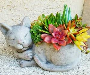 cat, creative, and decor image