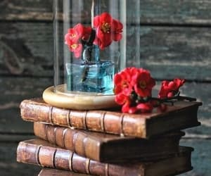 flores, libros, and vintage image