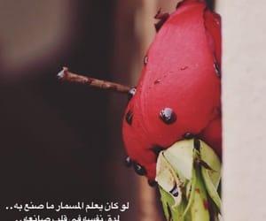 فاطمه, ﺍﻗﺘﺒﺎﺳﺎﺕ, and المدينه المنوره image