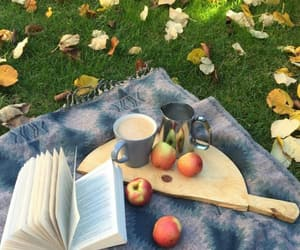 apples, picnic, and autumn image