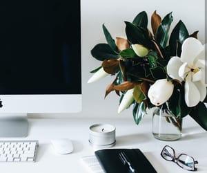 desk, mac, and magnolia image