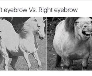 girl, funny, and unicorn image