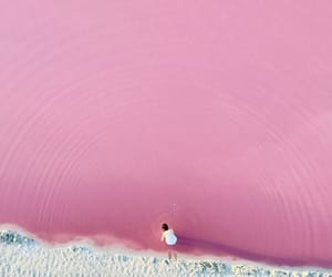pink, photography, and pastel image