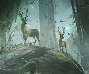 deer, nature, and cerf image