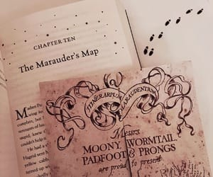 book, hermione granger, and prongs image