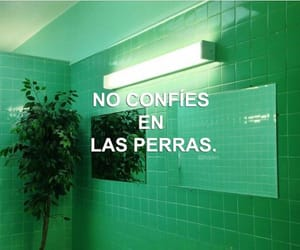frases bergas image