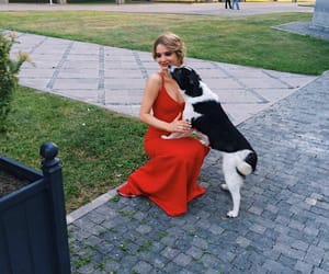 beauty, blonde, and dog image