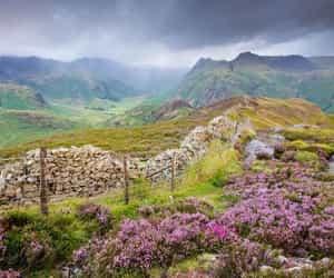 nature, landscape, and england image