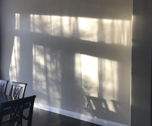 aesthetic, light, and shadow image