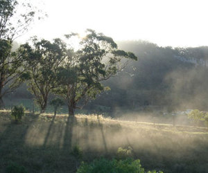 dawn, mist, and valley image