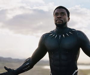 Marvel, t'challa, and black panther image