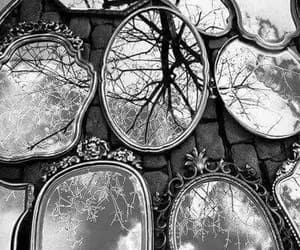 mirror, tree, and black and white image