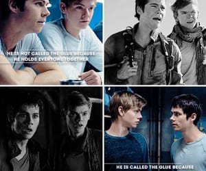 books, newt, and otp image