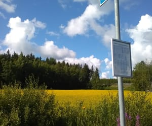 clouds, nature, and busstop image