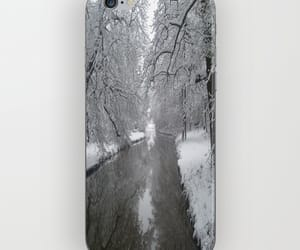 beautiful, trees, and winter image