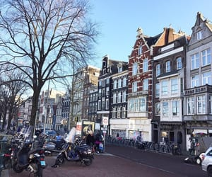 amazing, amsterdam, and colour image