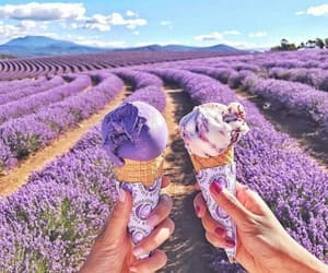 friendship, girlfriends, and ice cream cones image